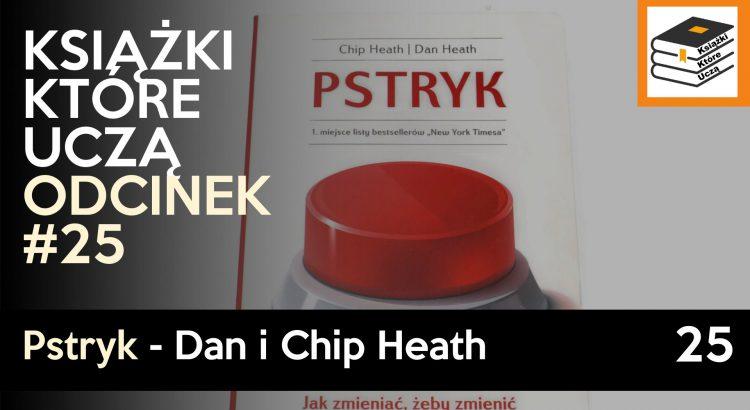 Podsumowanie ksiażki pstryk autorstwa Dana I CHipa Heathów